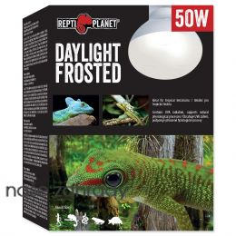 Žárovka REPTI PLANET Daylight Frosted 50 W